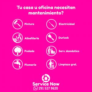 ServiceNow Detalle